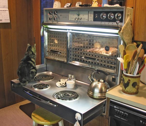The Fantastic Fantabulous Frigidaire Flair Cat Not